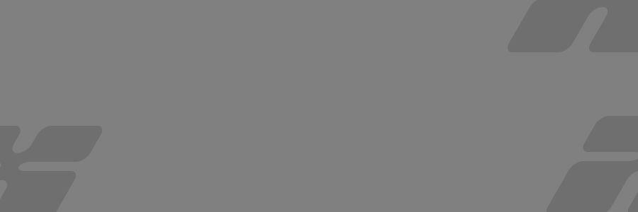 Pellentesque habitant morbi tristique senectus